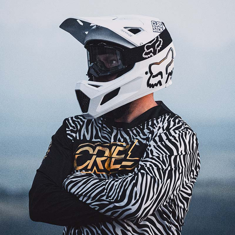 Safari Zebra PACK